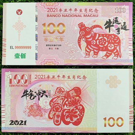 tiền 100 macao hình trâu