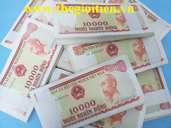 tiền 10000 cotton giấy