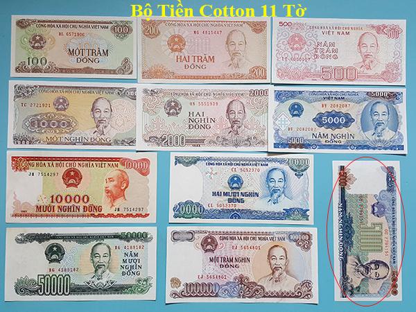 bộ tiền cotton 11 tờ