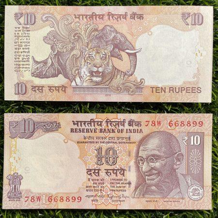 tiền con hổ ấn độ