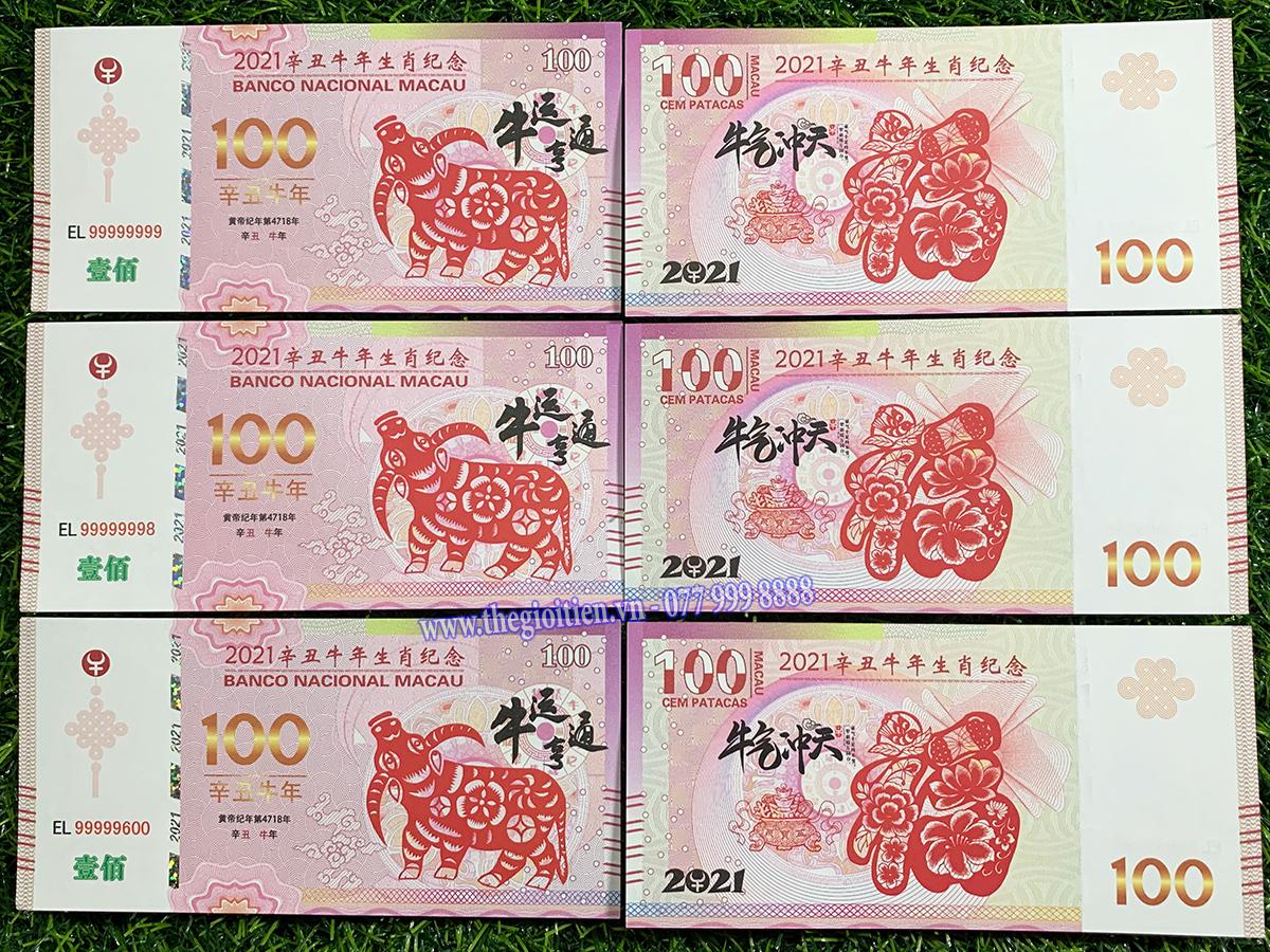 tiền hình trâu 100 macao