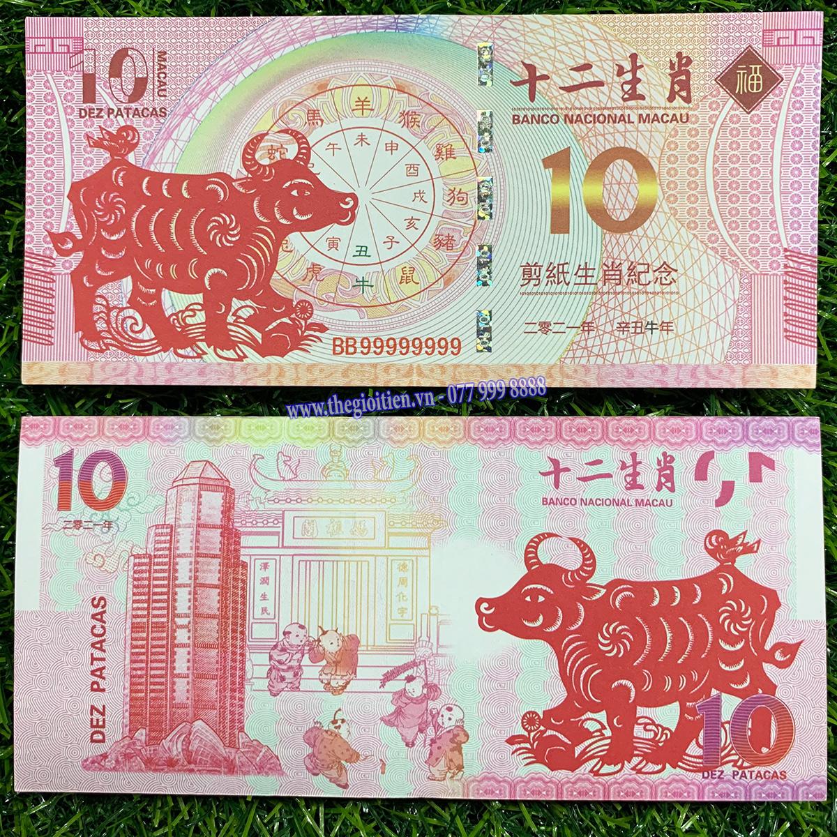 tiền con trâu 10 macao