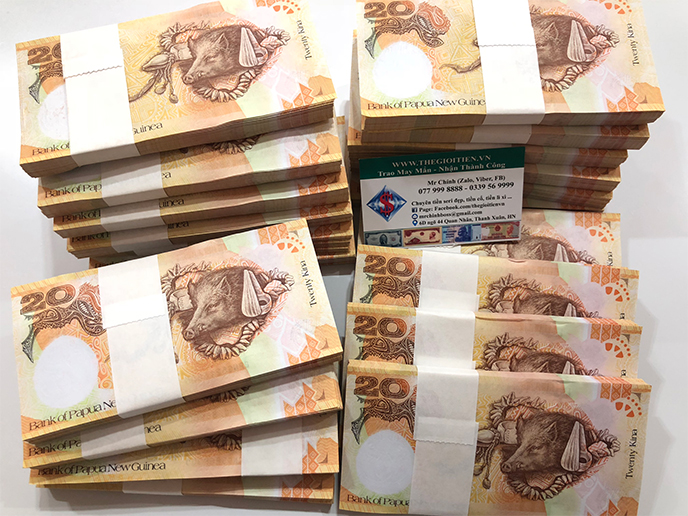 tiền hình con heo papua