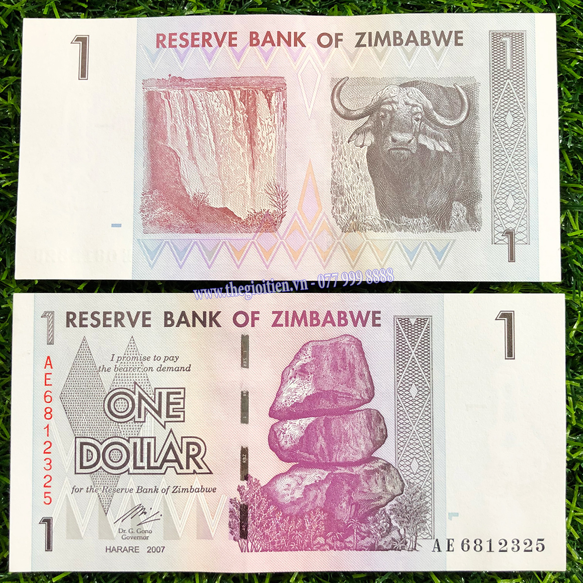 tiền trâu zimbabwe