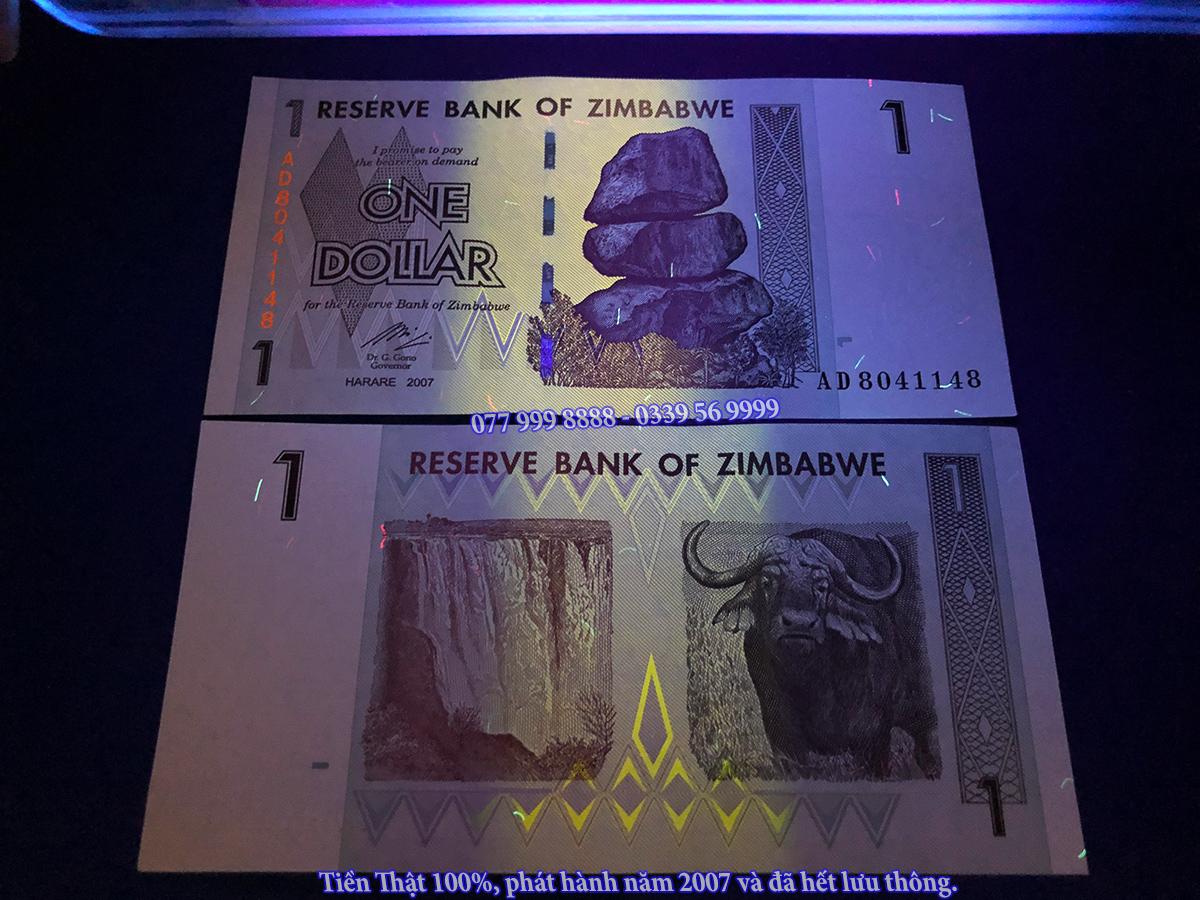 tiền trâu zimbabwe 2021
